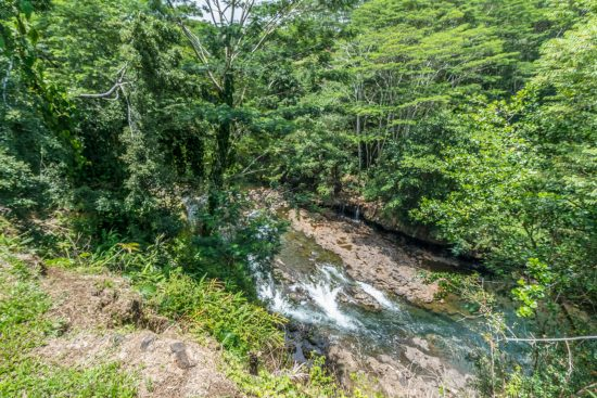 View of Wailuku River from the back of the property